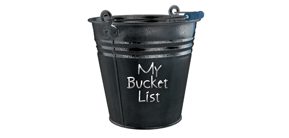 My Daily Bucket List